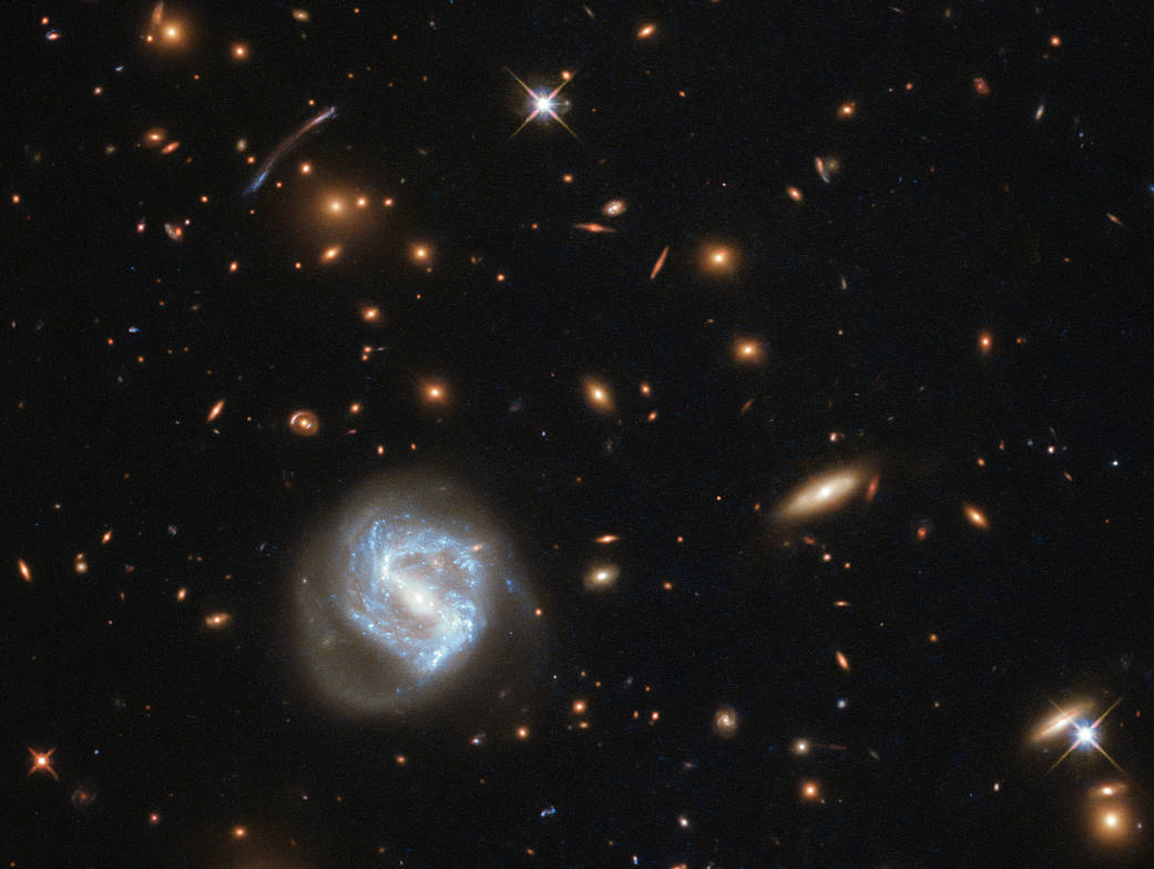 larger blue-white galaxy in a field of background orange galaxies