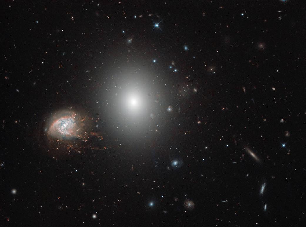 Hubble's Galaxies With Knots, Bursts Potw1838a