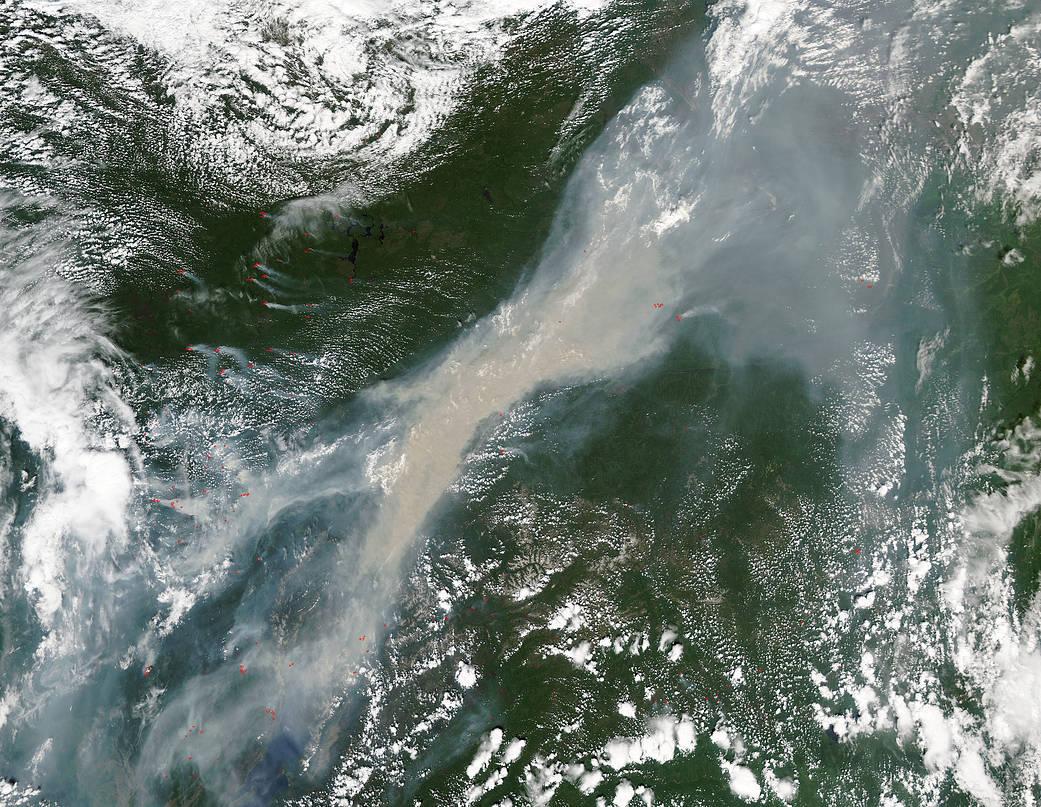 NASA обнаружили влесах Сибири опасность для всей планеты