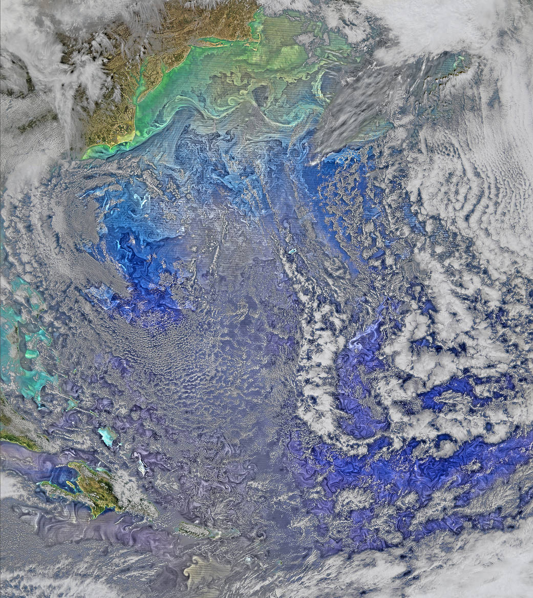 Satellite image of ocean with bright swirls of phytoplankton and white clouds overhead