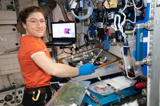 NASA astronaut Christina Koch conducts botany research aboard the International Space Station.