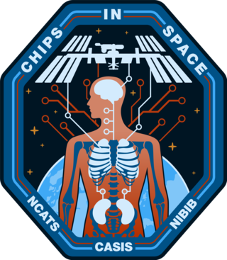 image of issue chips mission patch, detailing ISS and a generic human anatomy