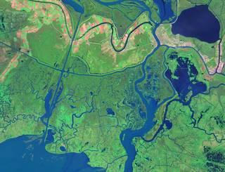Satellite image of the Mississippi River Delta