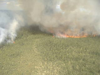 A lightning-caused wildfire burns in central Alaska