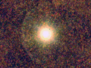 A yellow star surrounded by a clumpy envelope of dust.
