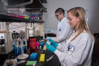 科学家在实验室工作的图像