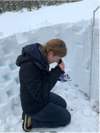 Isis leaning in snow, looking at crystals, select to view full image