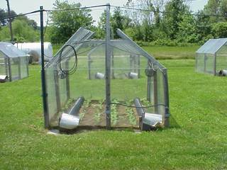 Image of a small garden plot surrounded by plexiglass walls like a greenhouse.