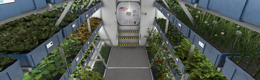 Meals ready to eat expedition 44 crew members sample for Outer space gardens