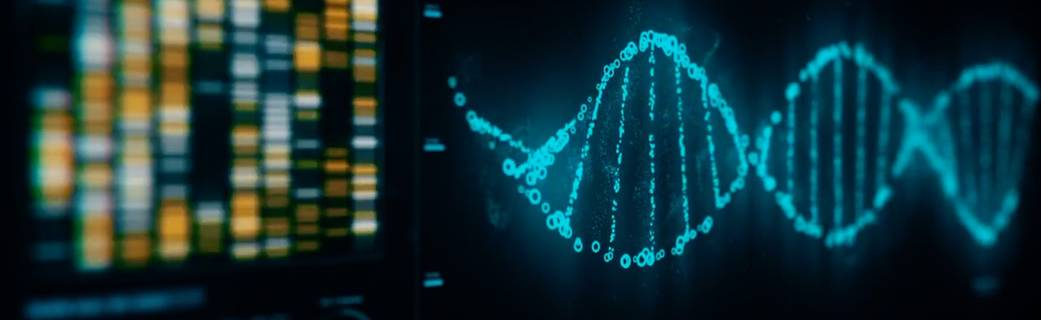 Screenshot of DNA