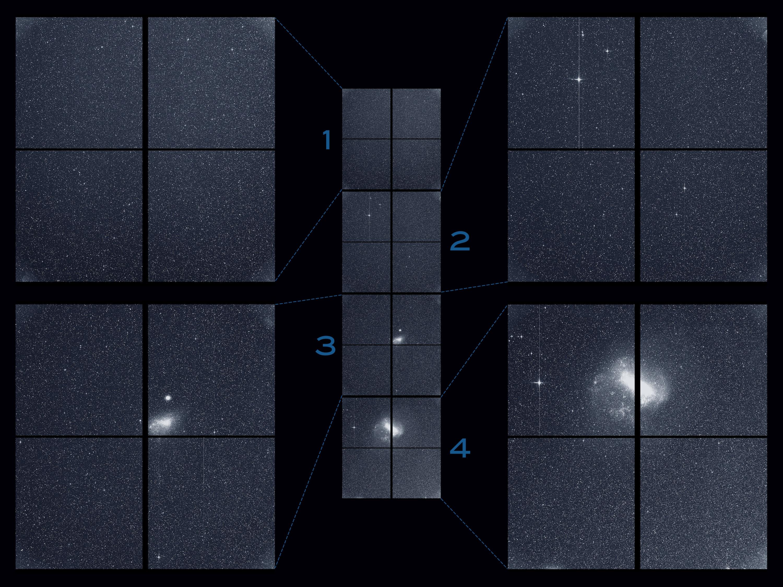 NASA的TESS分享了寻找新世界的第一个科学形象