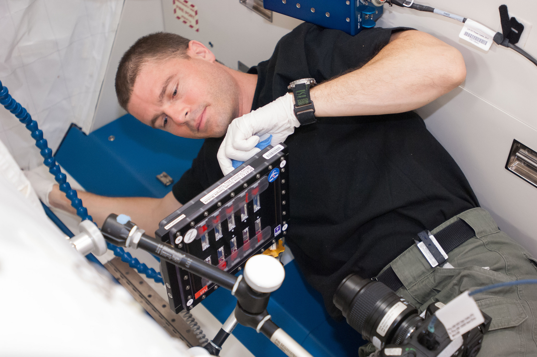 Space Station · Nasa Astronaut Reid Wiseman Conducts A Session With The  Binary Colloidal Alloy Testc1 Experiment