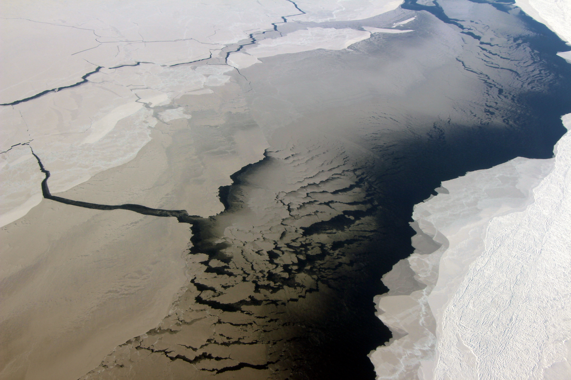 A coastal polynya, or opening in the sea ice cover, near the Filchner Ice Shelf in Antarctica, as seen during an Operation IceBridge flight on Oct. 10, 2018.