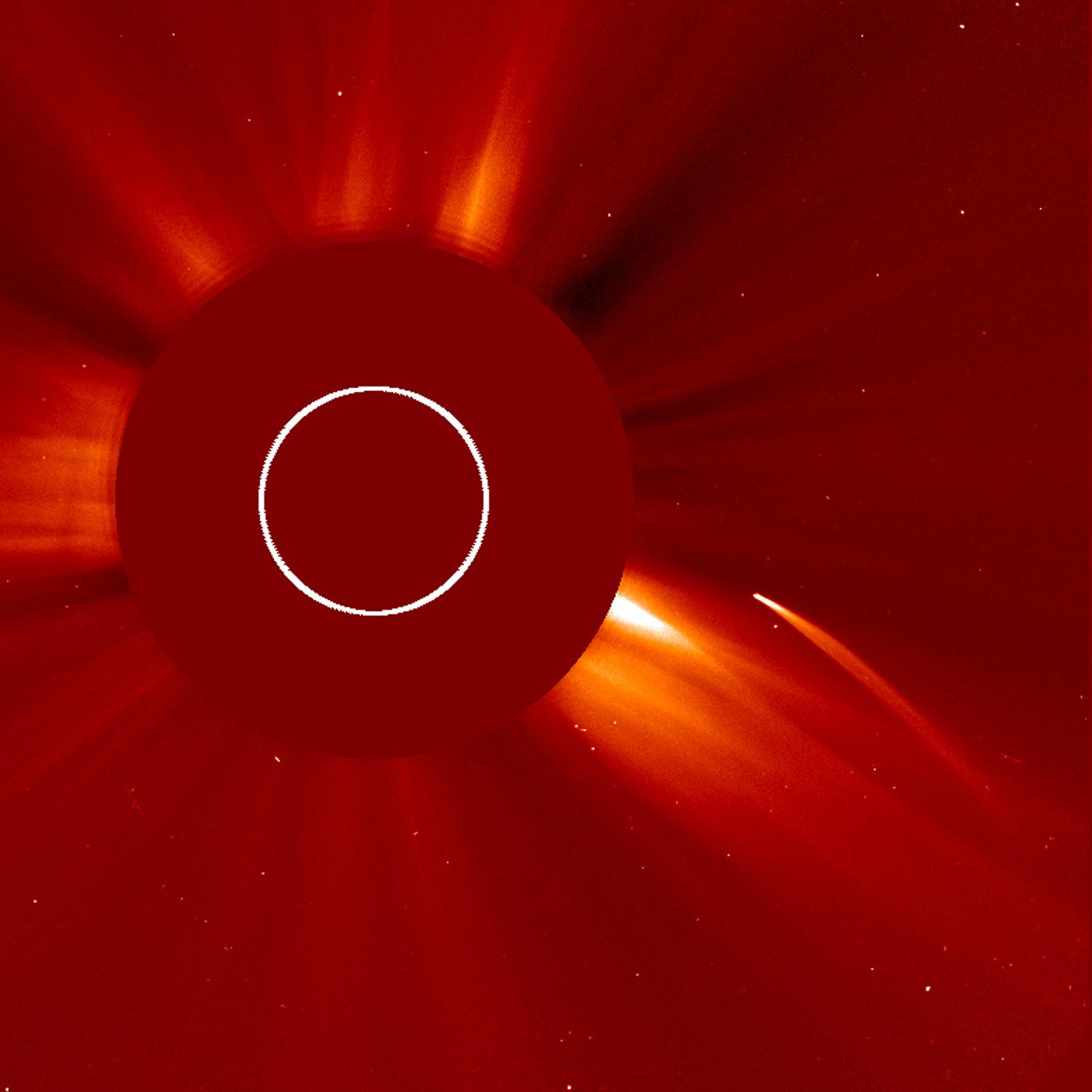 Risultati immagini per Sun diving comet and unknown deep space object captured by SOHO Spacecraft