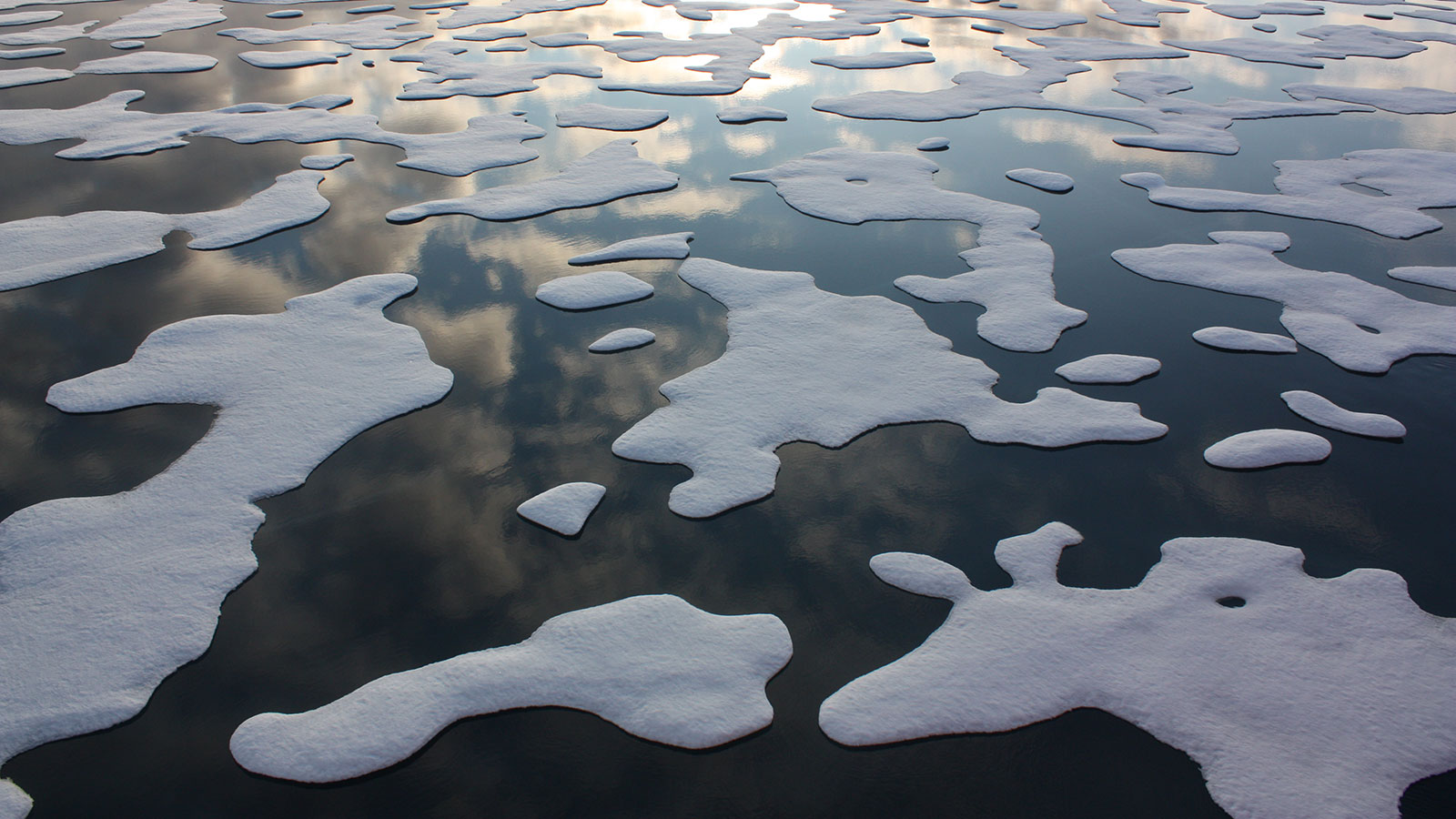 Image: Arctic Ice Melt Is Changing Ocean Currents