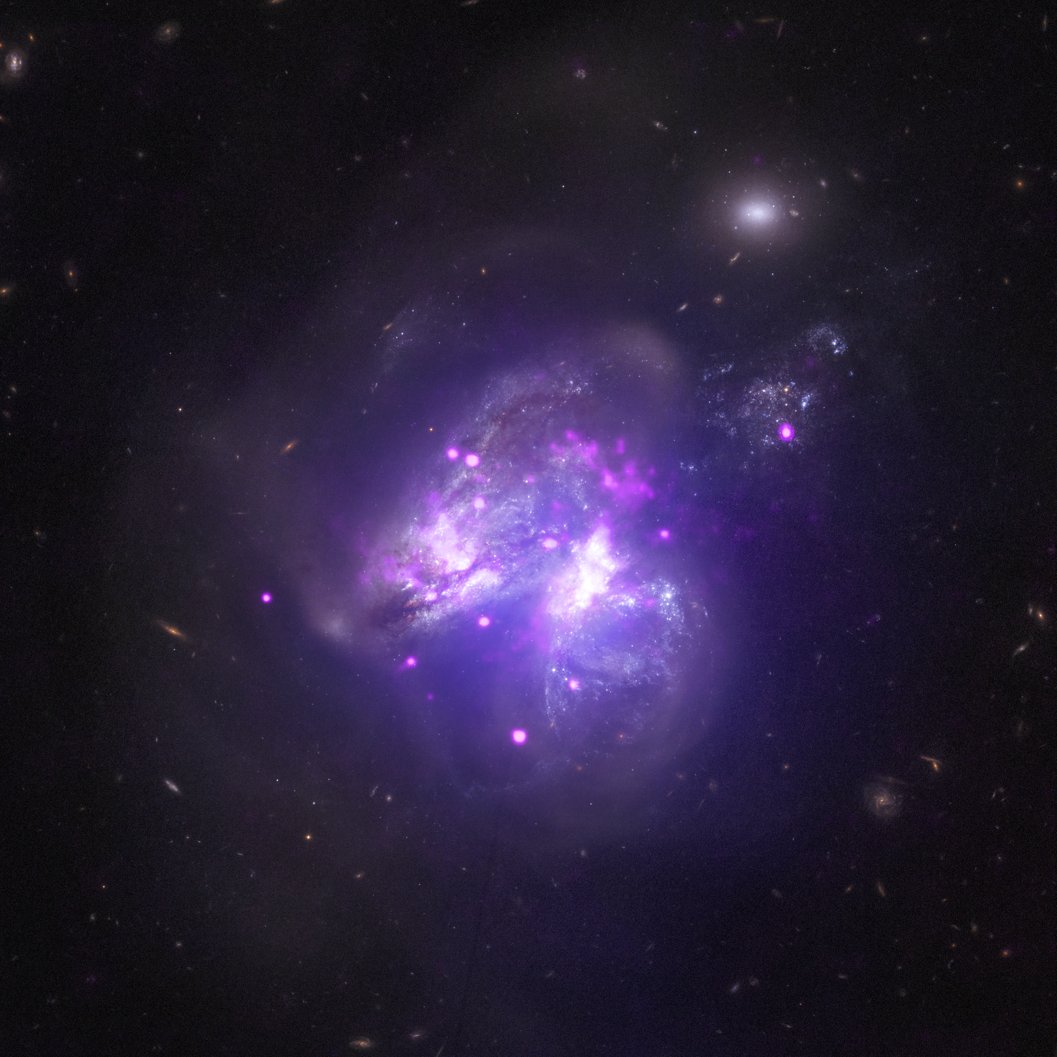 Chandra telescope made a family portrait of a cluster of NGC 6231 90