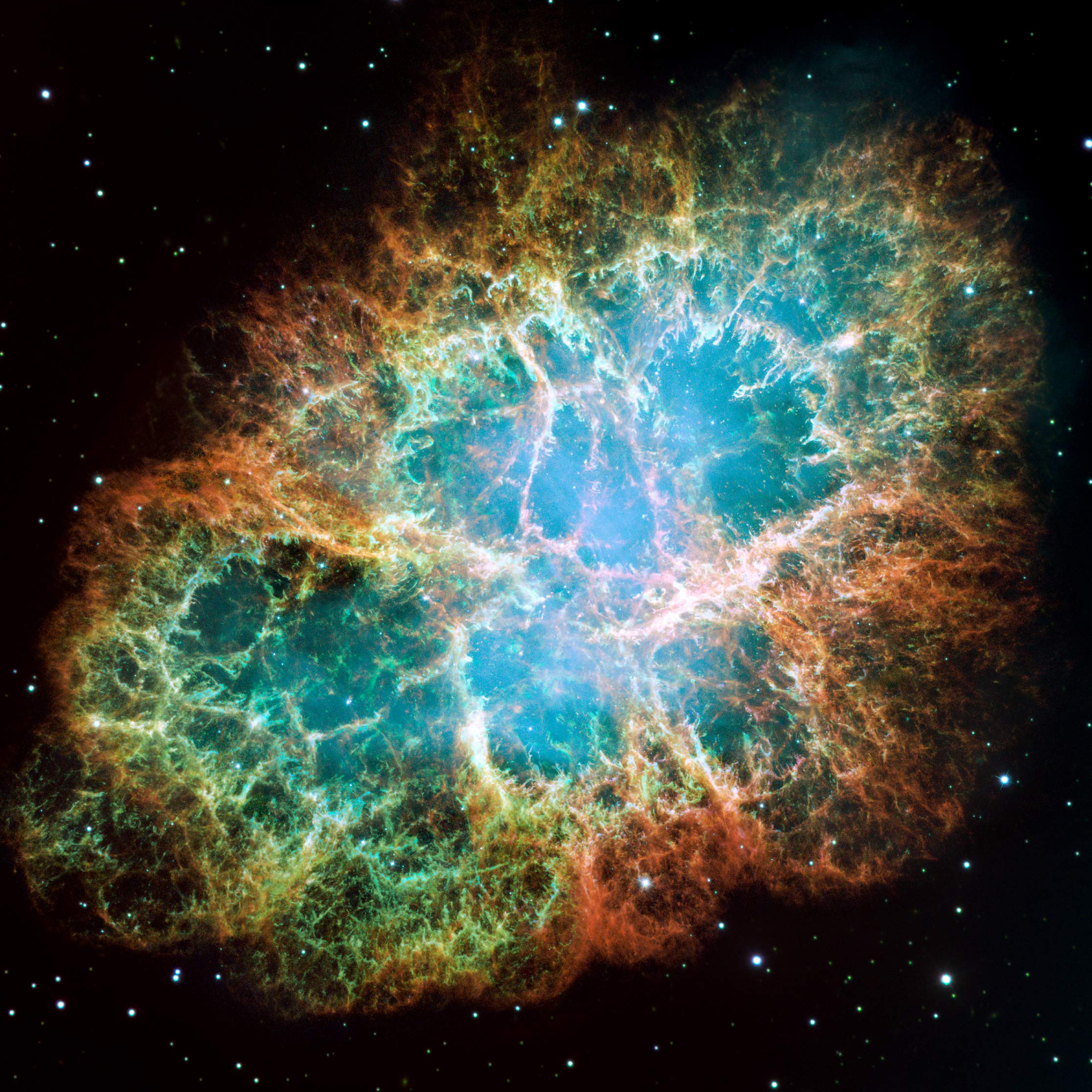 Messier 1, more commonly known as the Crab Nebula. The star that exploded was originally spotted in 1054 by Chinese astronomers but the nebula that rose from the supernova explosion itself was officially discovered in 1731. Credit: NASA, ESA, J. Hester and A. Loll (Arizona State University)