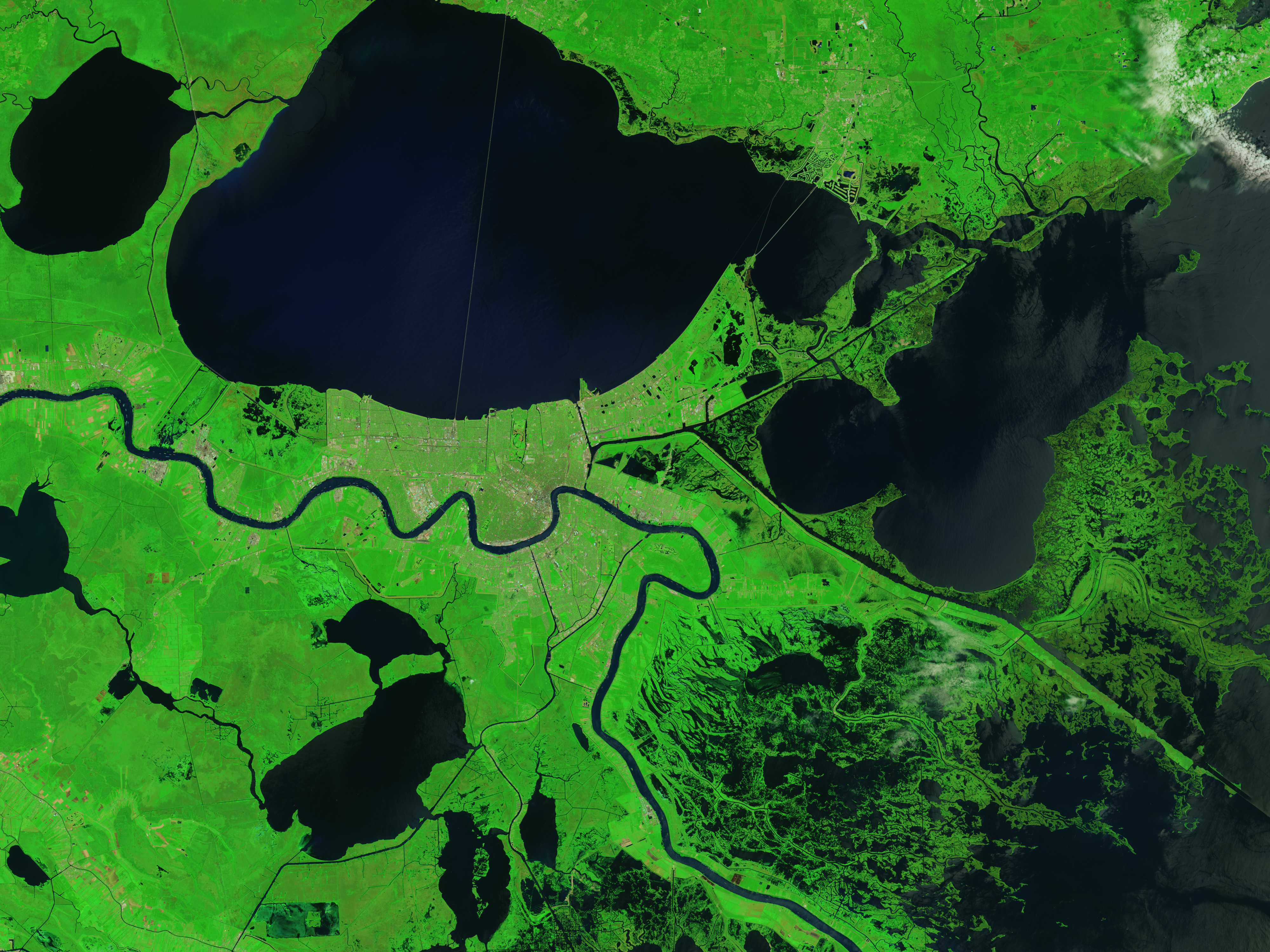 Signs of Katrina Linger in the Marshes