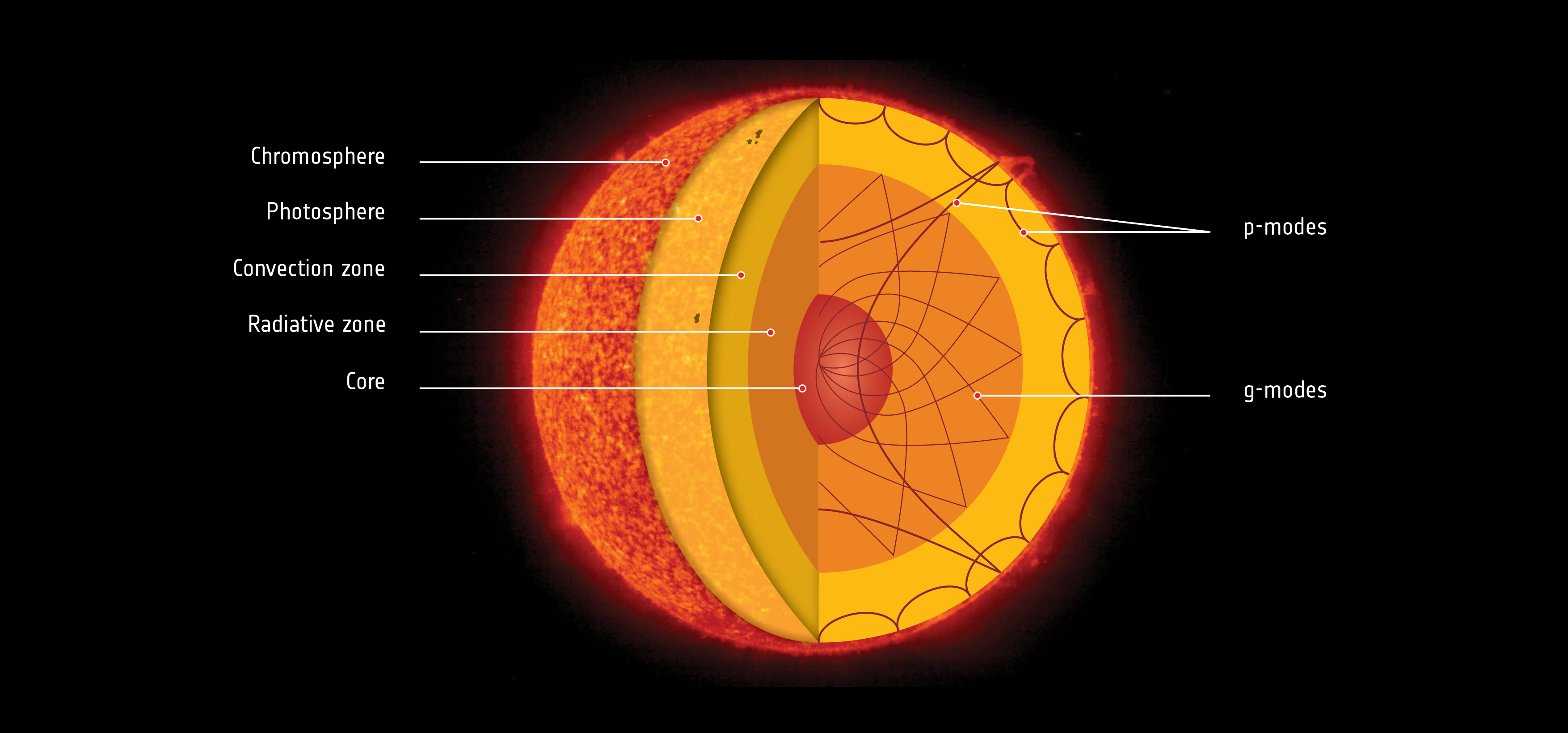 Soho reveals rapidly rotating solar core nasa cross section diagram of the sun pooptronica