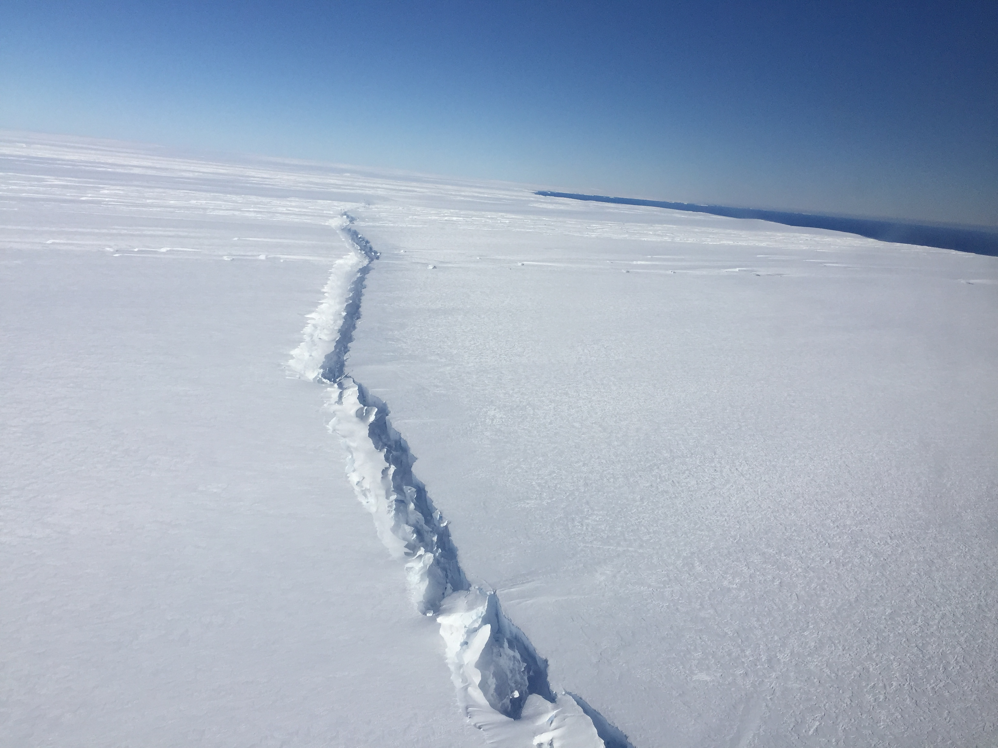 global sea ice diminishing despite antarctic gains