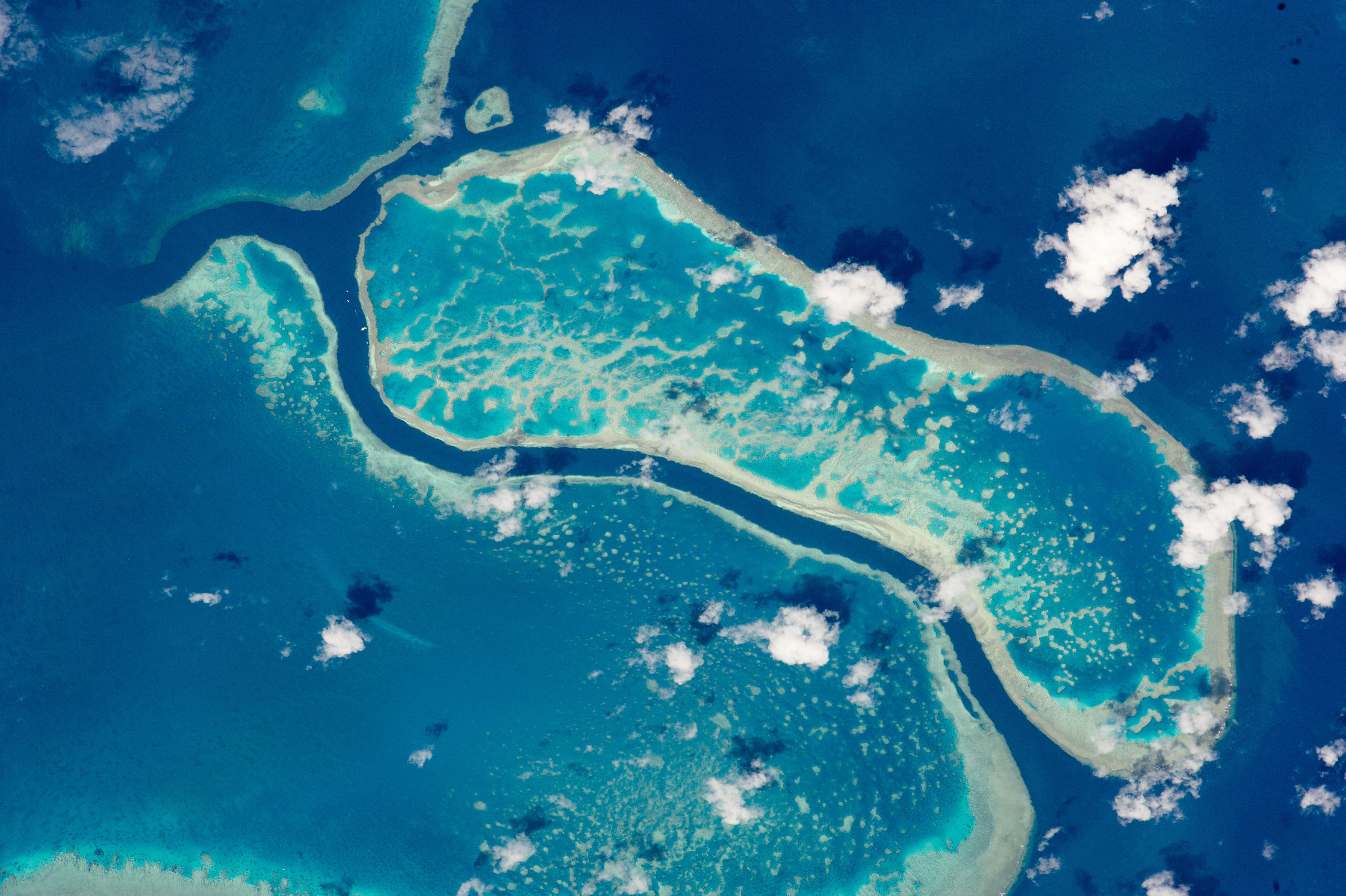 great barrier reef near whitsunday islands nasa