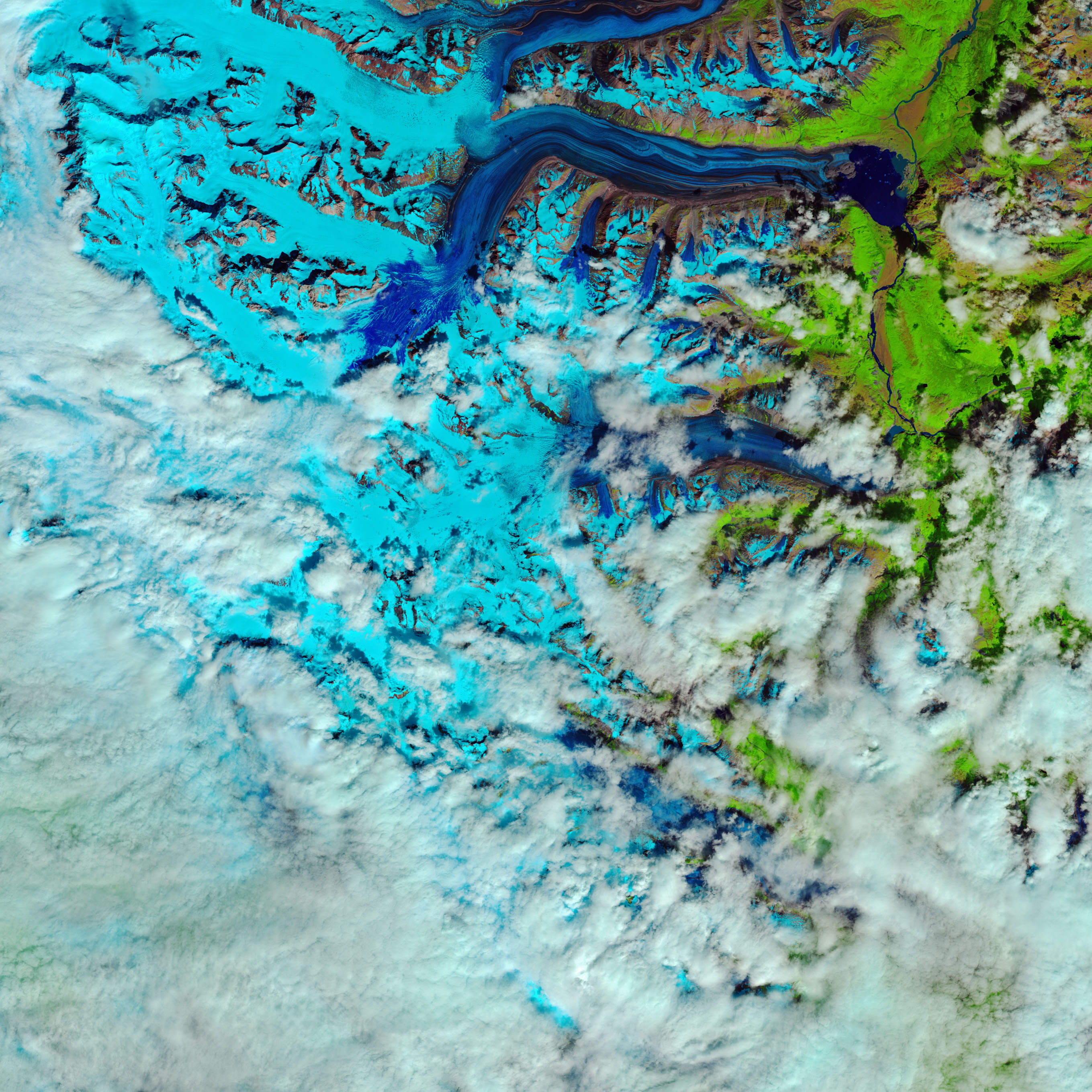 'Snow Swamp' on Canada's Lowell Glacier