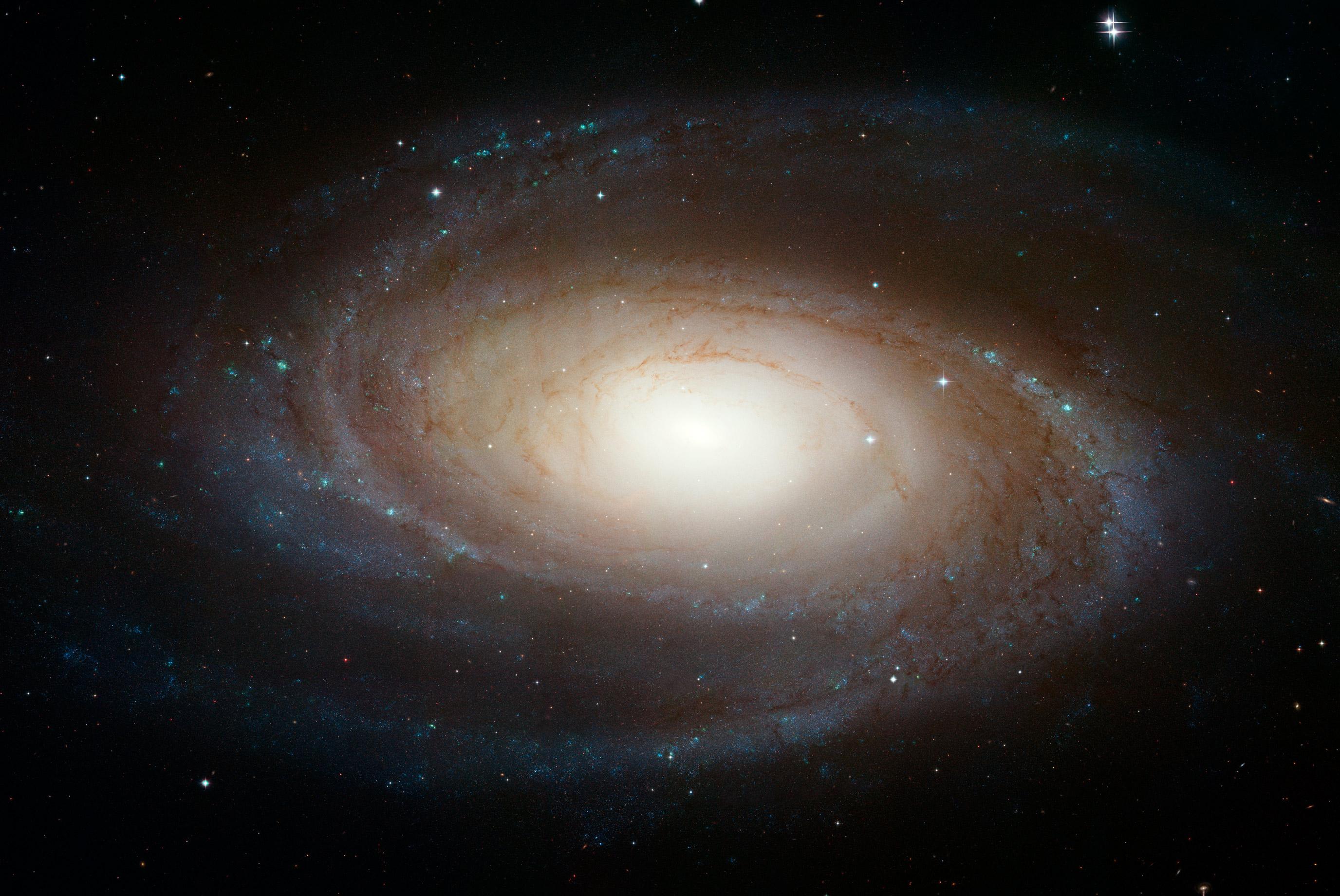 Kết quả hình ảnh cho Messier 81