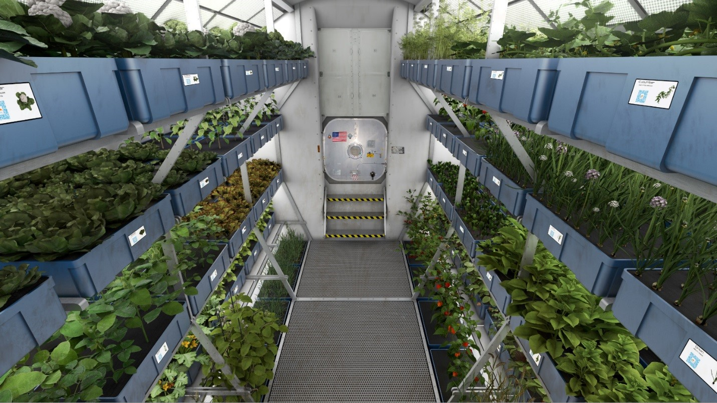 Artist Depiction Of A Plant Growth Module On Mars