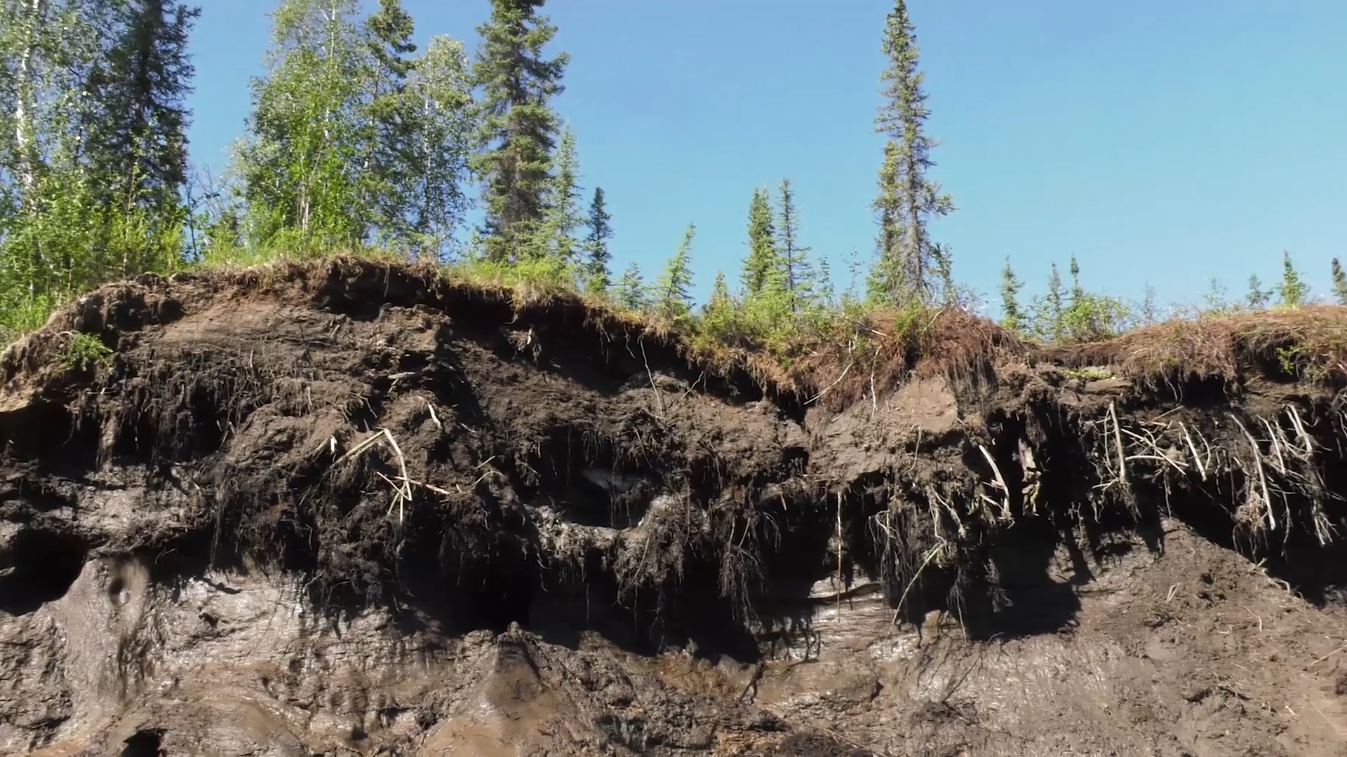 Image: Arctic Shifts to a Carbon Source due to Winter Soil Emissions