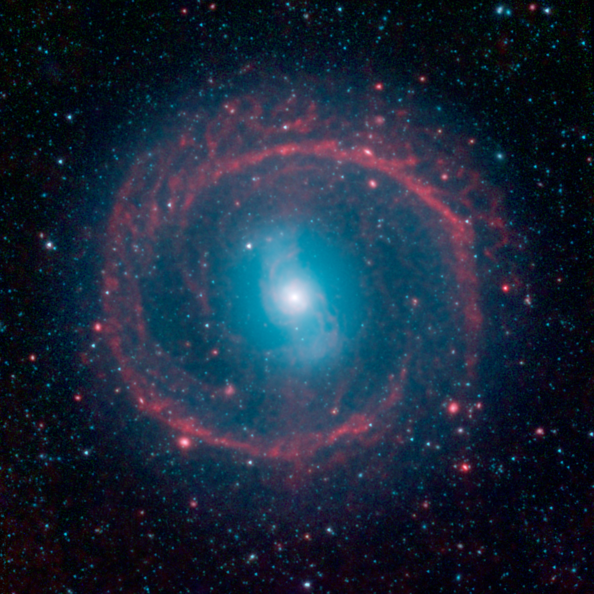 ring of stellar fire