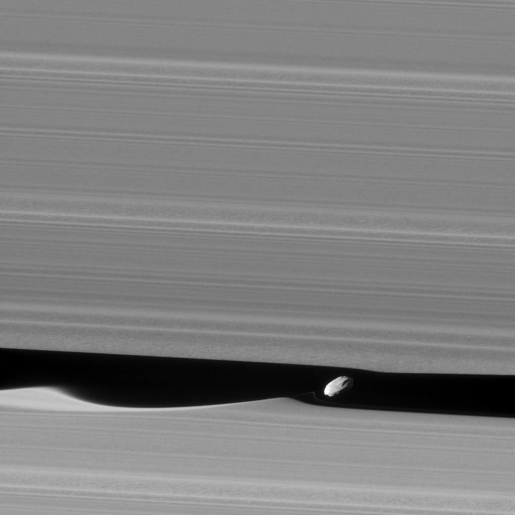 Daphnis Up Close