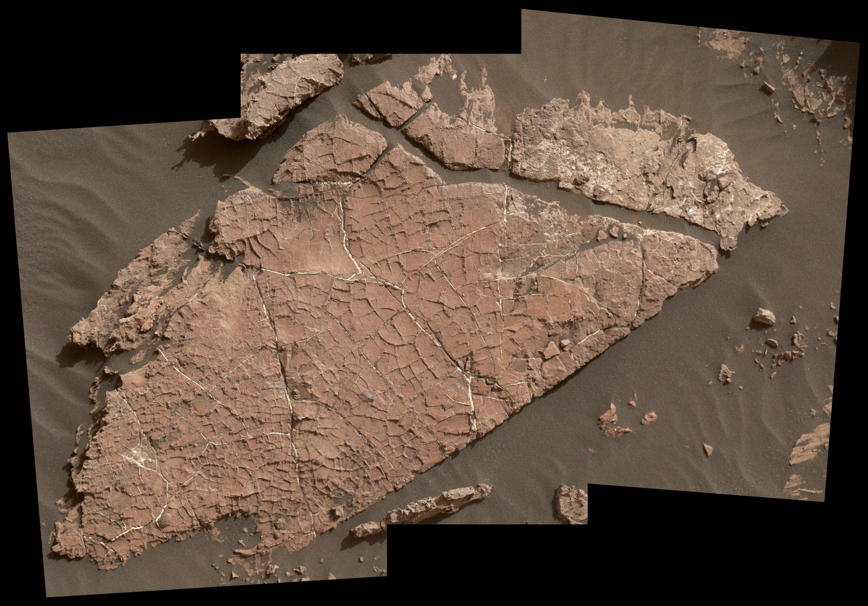 """เครือข่ายรอยแตกของหินบนดาวอังคาร บริเวณพื้นที่ๆเรียกว่า """"Old Soaker"""" ซึ่งก่อตัวขึ้นมาจากชั้นดินโคลนที่แห้งไป เมื่อราว 3 พันล้านปีก่อน ภาพนี้มีความกว้าง 90 เซนติเมตร ถ่ายไว้ได้โดย กล้อง MAHLI ที่แขนกลของรถสำรจ Curiosity Mars rover ของนาซ่า"""