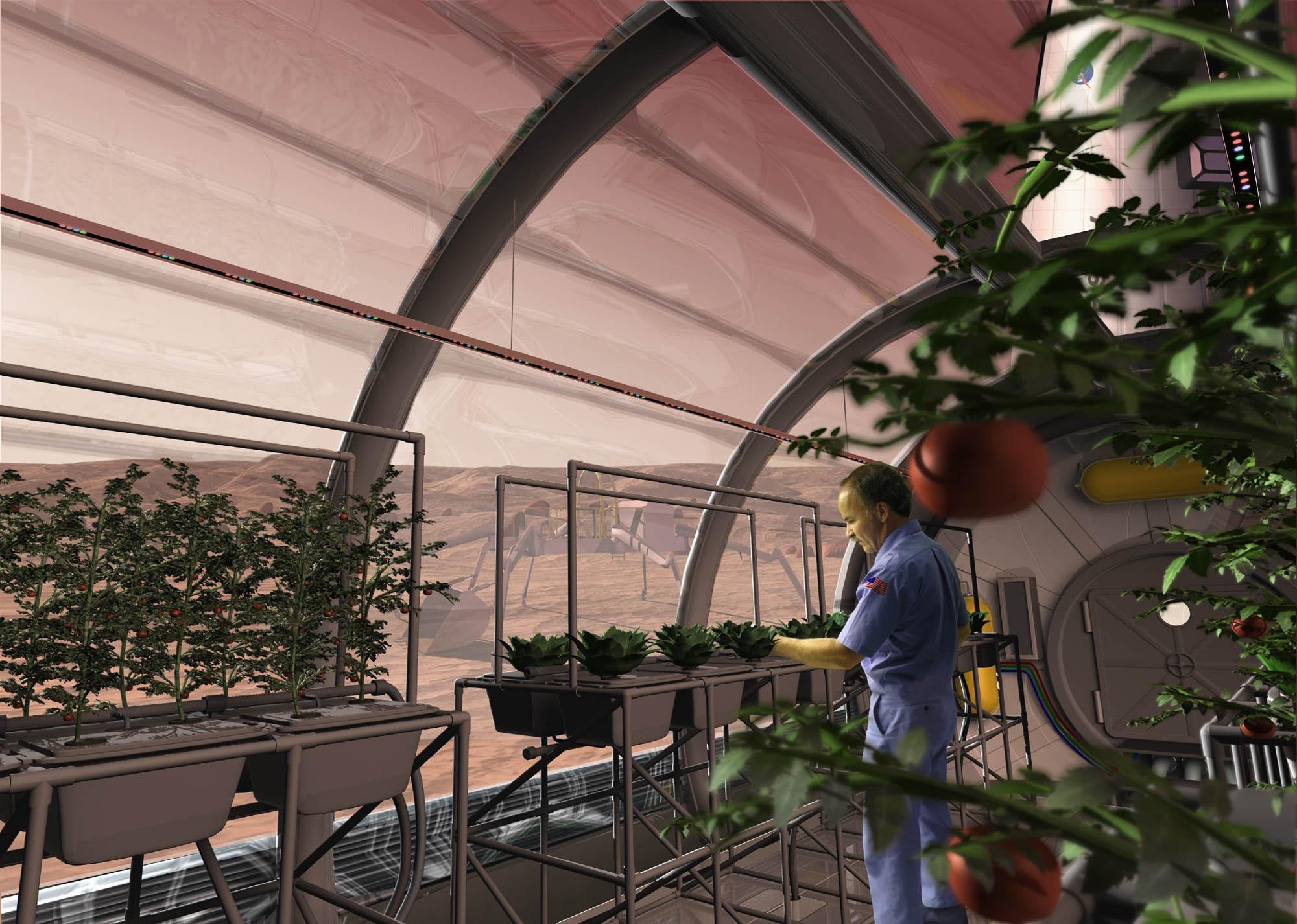nasa plant researchers explore question of deep space food crops