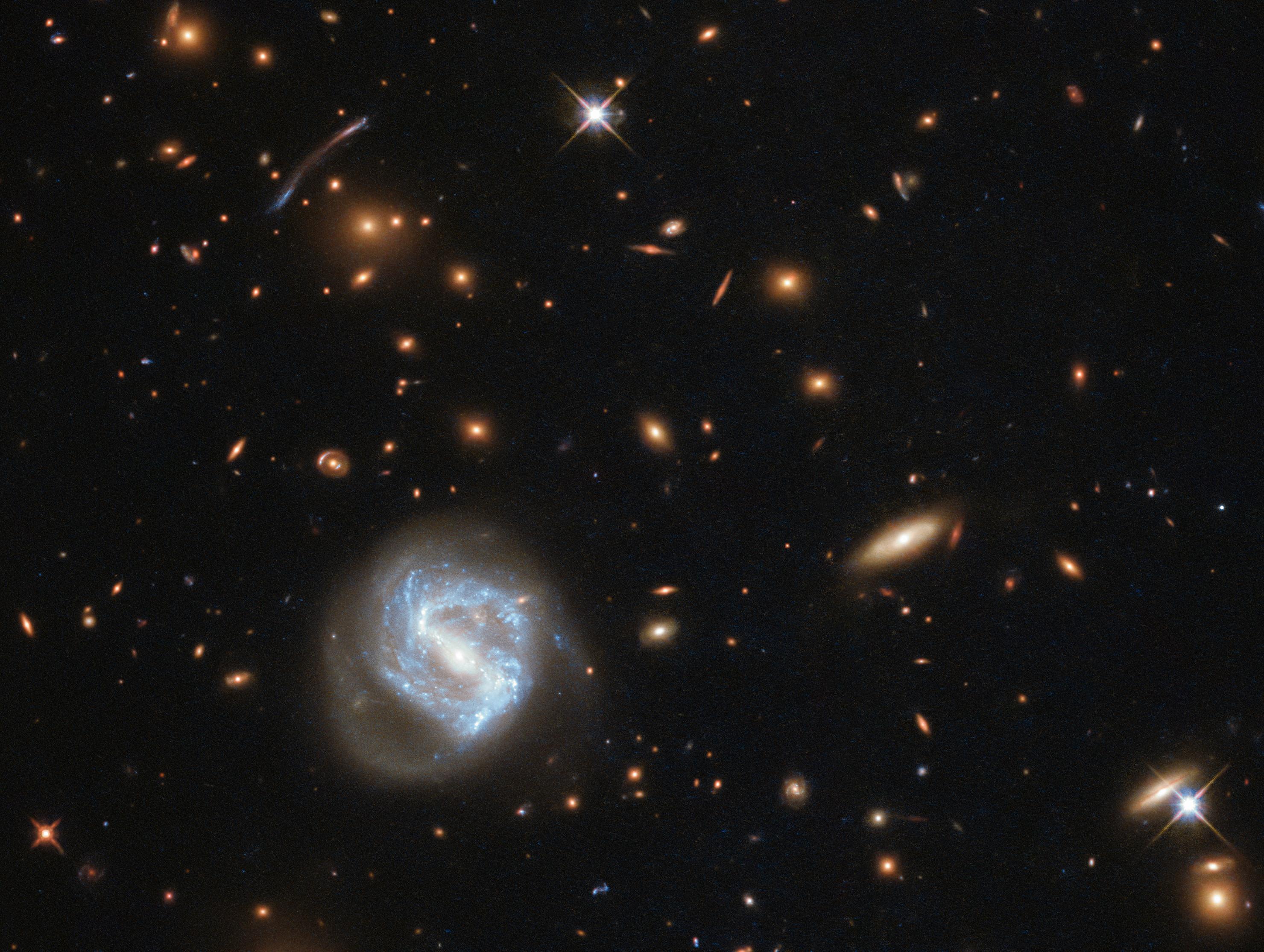 Hubble's Galaxy Cluster Cornucopia