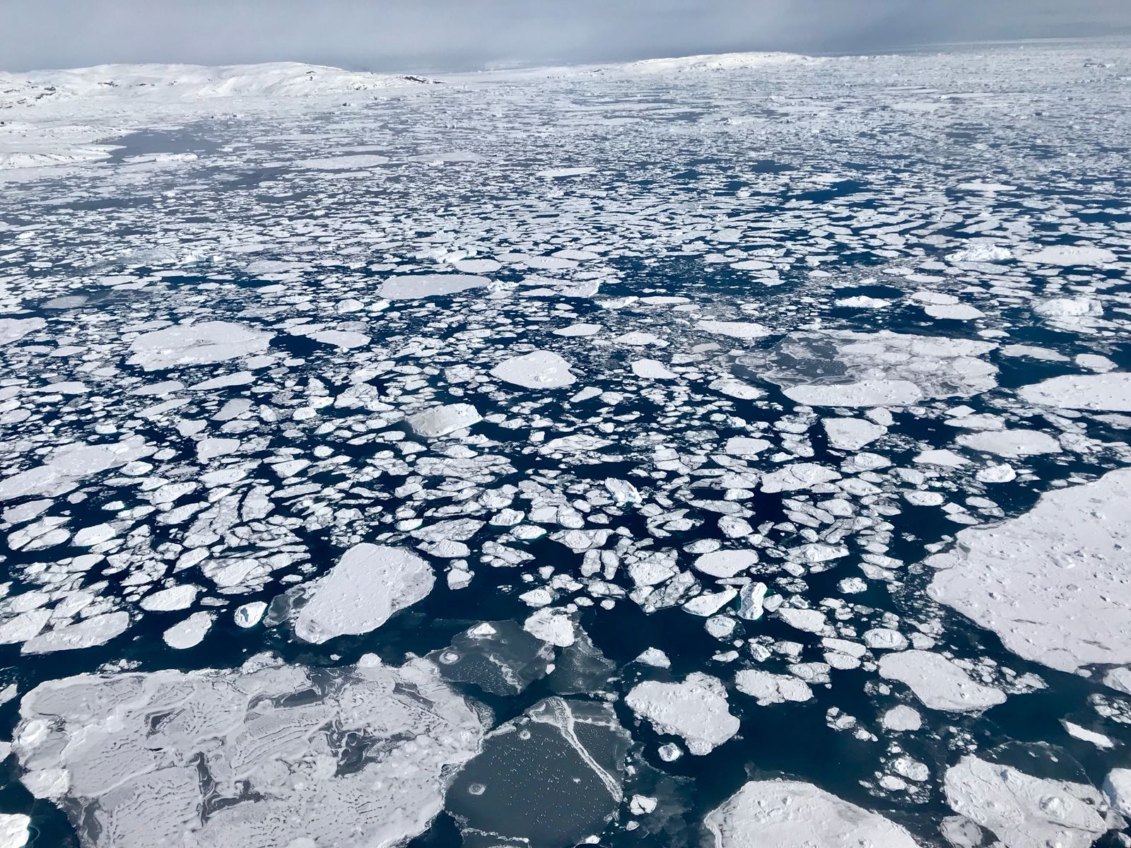 Image: Arctic Sea Ice 2019 Wintertime Extent Is Seventh Lowest