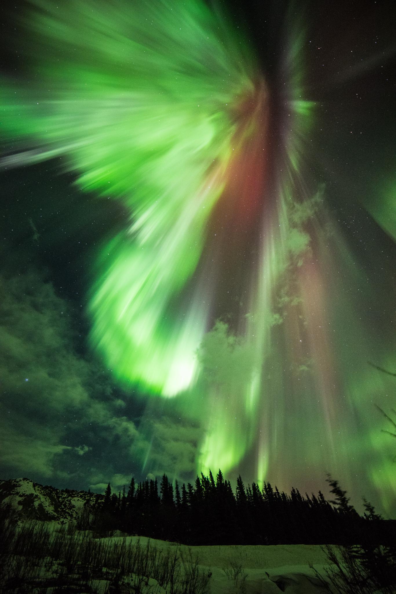 Red Aurora Lights Up Maryland Sky | NASA