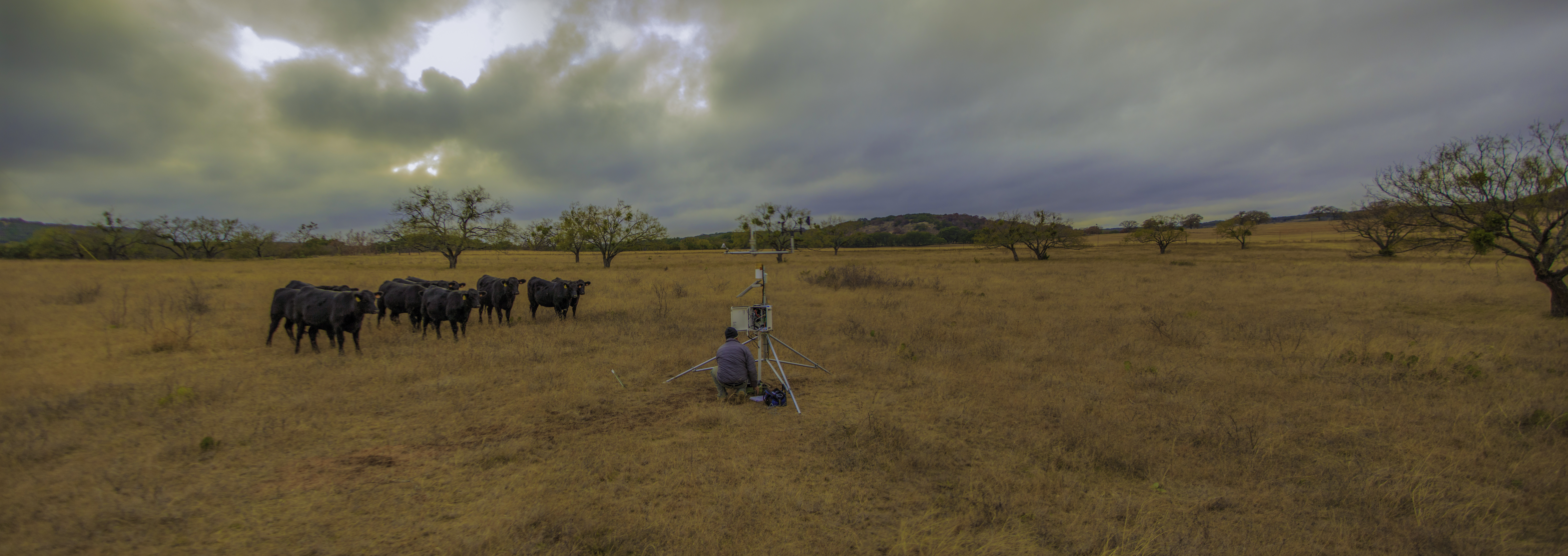 Vertical Aquifer Profiling Texas Smap Image