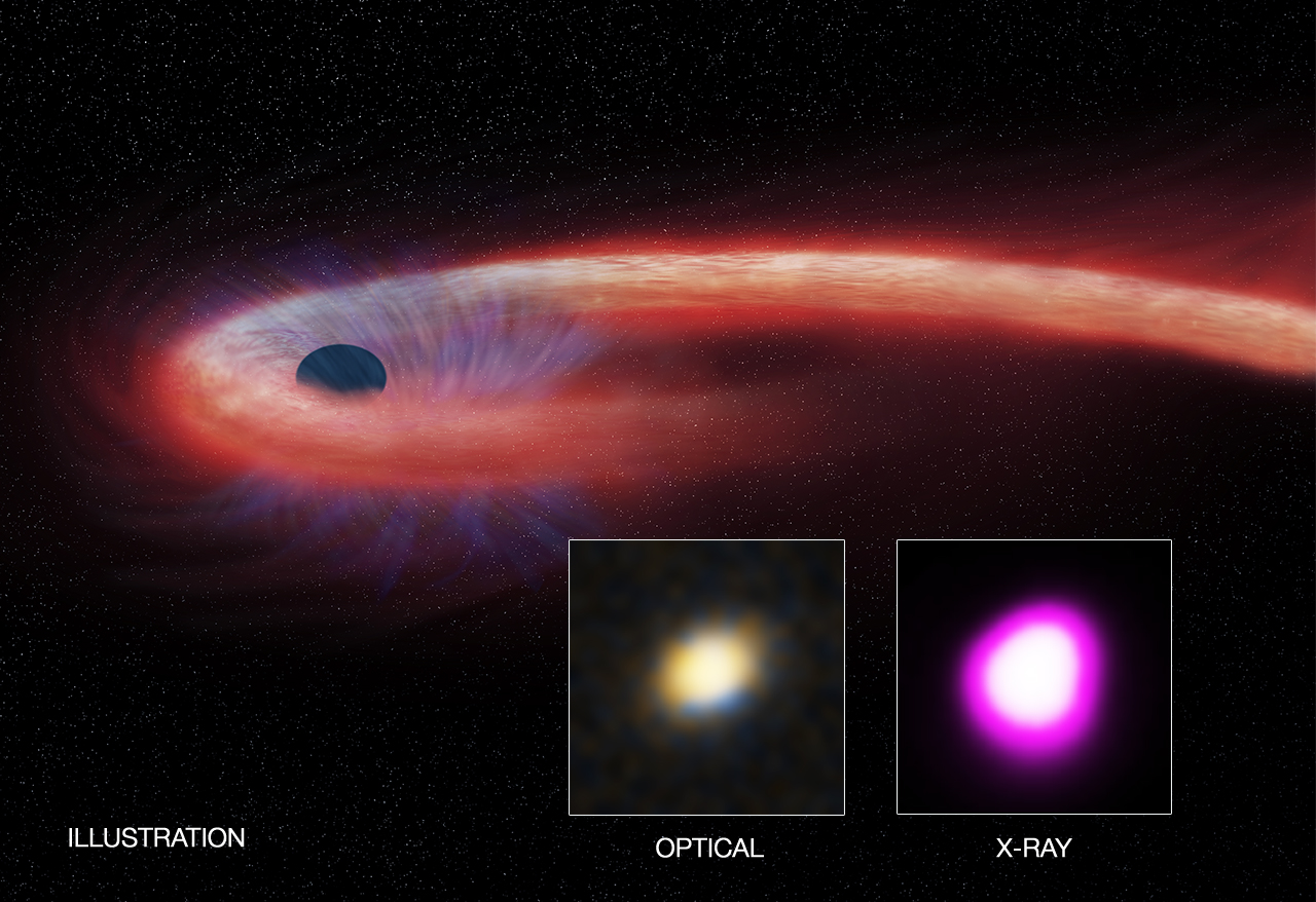 Black Hole Meal Sets Record for Duration And Size | NASA