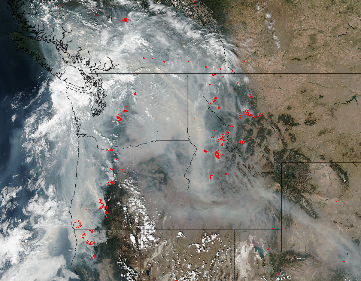 Wildfire smoke and health: 5 questions answered