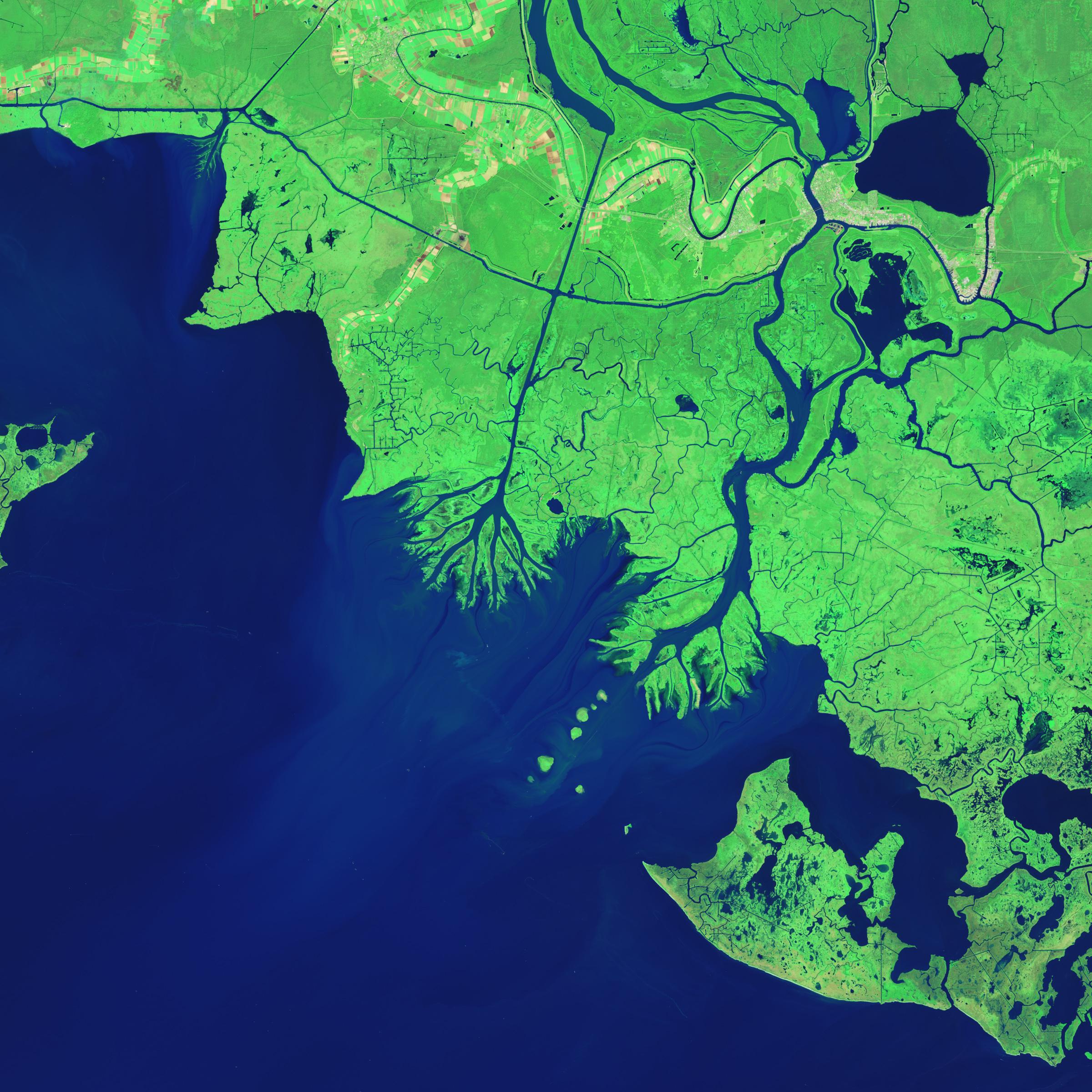 Nasa earth images nasa growing deltas in atchafalaya bay gumiabroncs Images