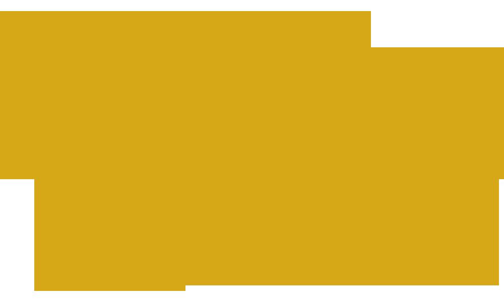 NASA LANGLEY RESEARCH CENTER CENTENNIAL